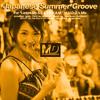 S.E.X.T.R.E.A.M.U.D.O. - Japanese Summer Groove -
