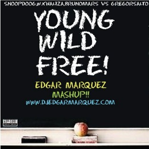 Snoop Dog & Wiz Khaliza vs Gregor Salto -Young and Free - Edgar Marquez Mshup