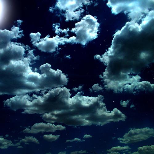 Fragments of Night