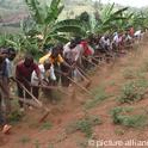 Is land grabbing in Africa development or colonialism?