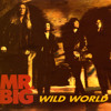 Wild world-mr.big cover
