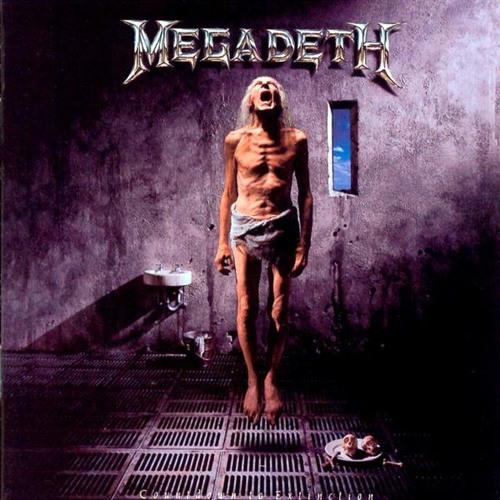 Megadeth - SOD (Froglicka Psy-Trance Remix)