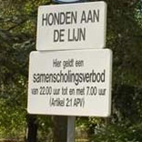 2012-08-20 Reportage Plantsoen met Henny Keereweer over samenscholingsverbod