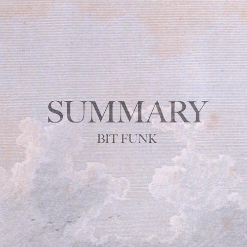 Bit Funk - Summary