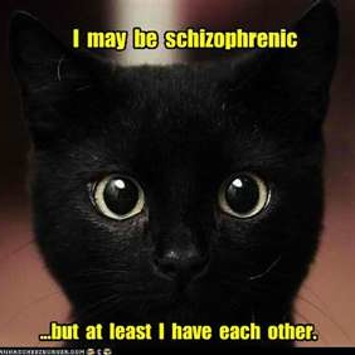 Nicky Romero & Mitch Crown Vs Hook N Sling - Another Schitzophrenic Night (DJ Purrr Mashup)