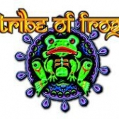 @ Tribe of Frog space @ Nozstock, 2012