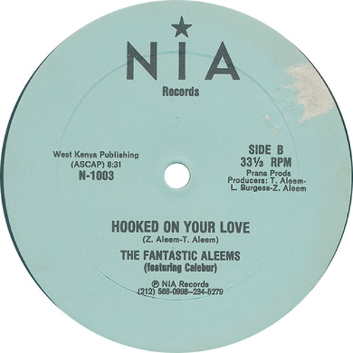 Hooked on your Love - The Fantastic Aleems feat. Leroy Burgess (Chewy Dub)
