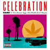 Game Ft Chris Brown Tyga Lil Wayne And Wiz Khalifa Celebration Mp3