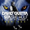 David Guetta Feat Sia Furler - She Wolf - Lyrics