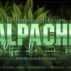 Alpache - SaLgo de Mi casa Ft. JC & JayNieL ( Prod. By GLock eL Fantasma ) Portada del disco