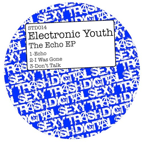 Electronic Youth - Echo (Original Mix)[Sexy Trash Digital]