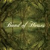 Band of Horse The Funeral (Gestört aber Geil Bootleg)
