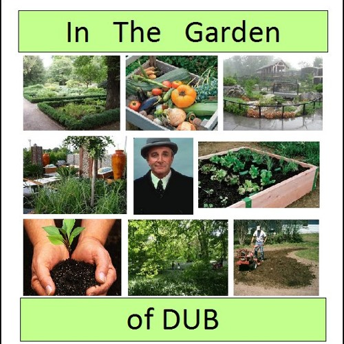 In the Garden of Dub (Parts 1 & 2)