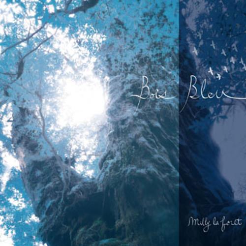 Bois Bleu