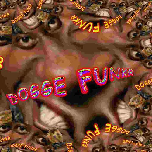 DOGGE FUNKR