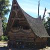 Batak : Festive ceremony I, Samosir - North Sumatra