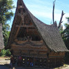 Batak : Festive ceremony II, Samosir - North Sumatra