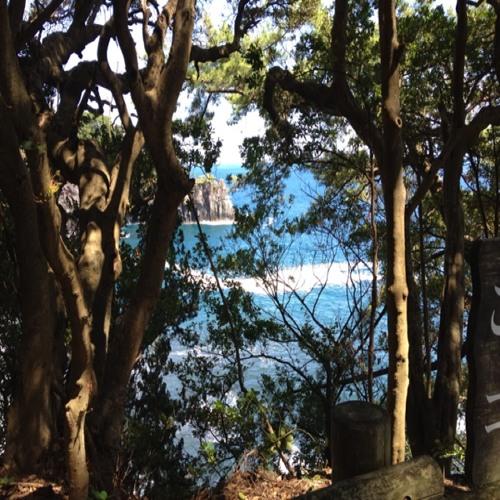 Lyden af Stillehavs-picnic at 伊豆高原駅 (Izu-Kogen Sta.)
