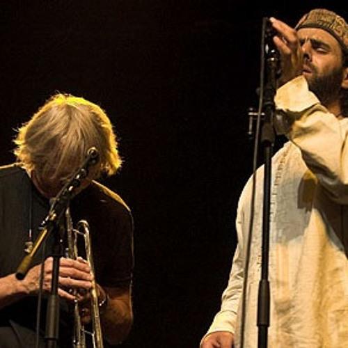 Erik Truffaz & Mounir Troudi - Flamingos
