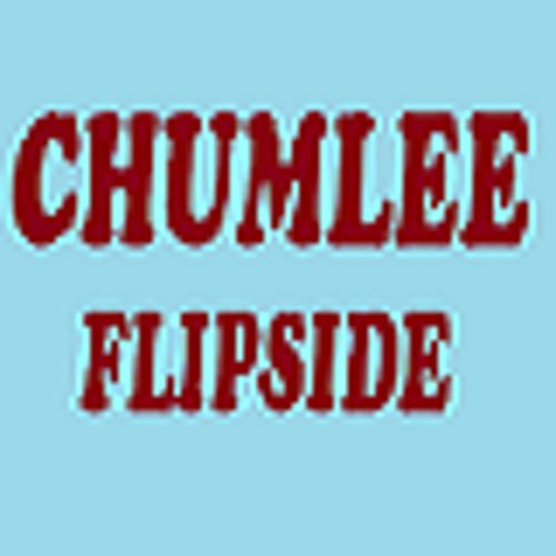 Chumlee - Flipside