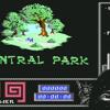 Last Ninja 2 Central Park