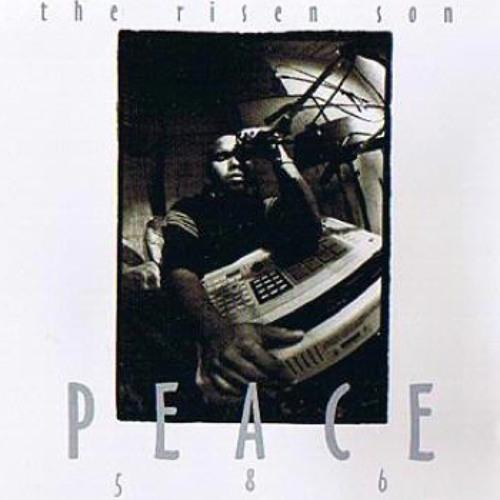 Step Inside - Peace586