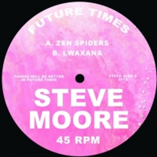Steve Moore - Zen Spiders FT014