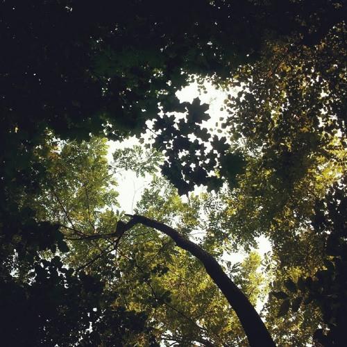 "Oddsoul - ""Summer Lovin' (ft. Anastasia)"" - [Influenza Media]"