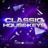 Classic House Keys