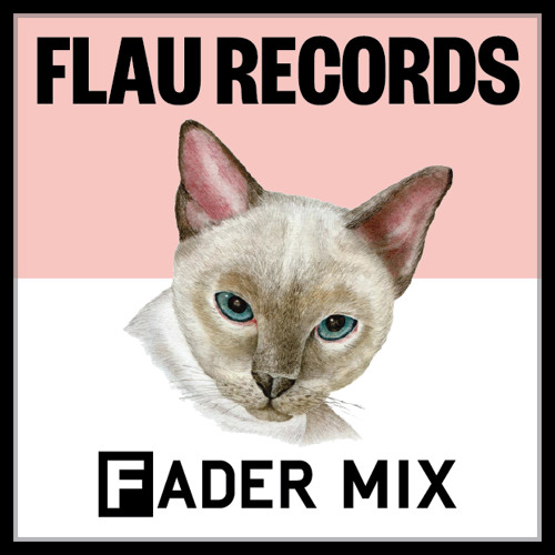 Flau Records FADER Mix