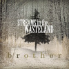 Streams in the Wasteland -Acoustic