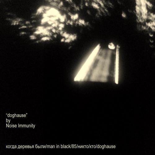 Noise Immunity - doghause