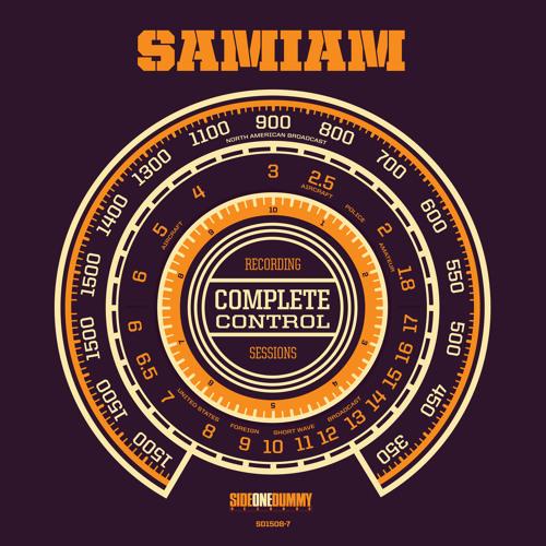 """Sunshine"" by Samiam"