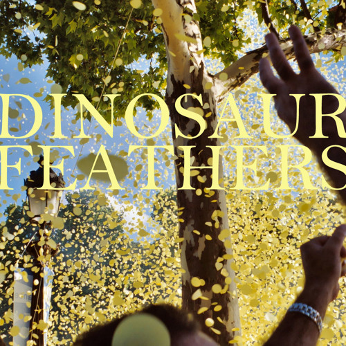Dinosaur Feathers - Young Bucks