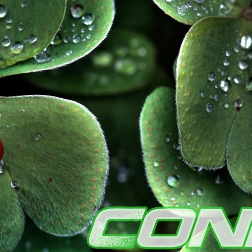 Condi - Morning Dew