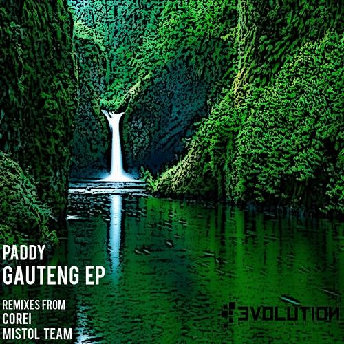 Paddy - Gauteng (Original Mix) // FREE