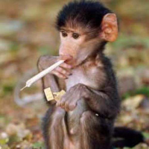 4i20 vs Capital Monkey - Smoking Monkeys (demo)