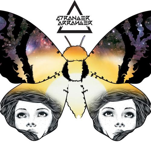 Stranger Arranger - Lets Do Acid (Original Mix)