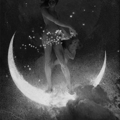 Honey Lights The Moon