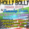 Swanky Trios- Holly Bolly Remix 2012 Official Audio - DJ HM | DJ YSK | DJ VIKRAM