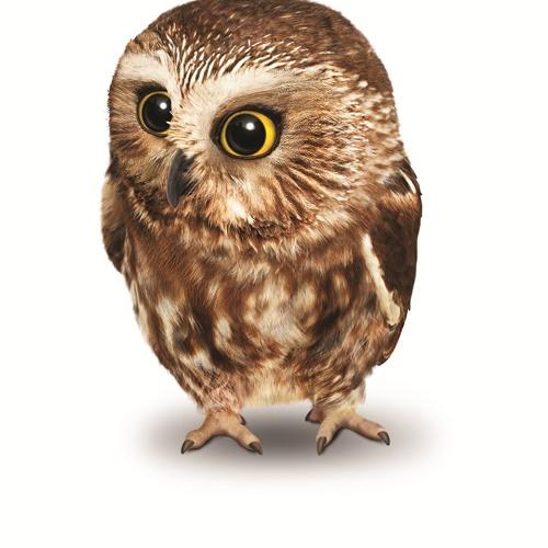 Sóley:Smashed Birds (AllucanRemix) Click on FREE DOWNLOAD