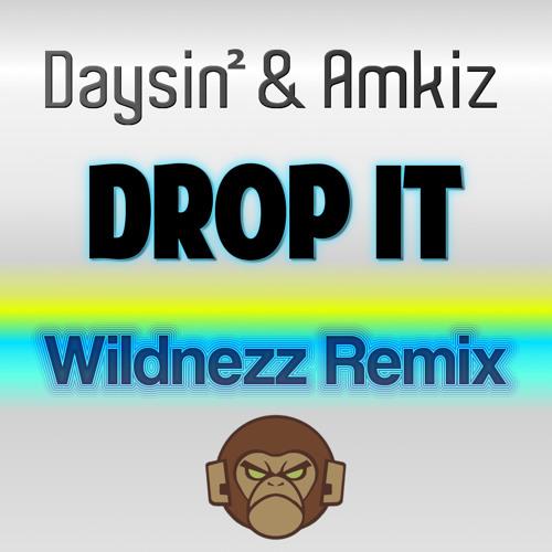 Daysin & Amkiz - Drop it (Wildnezz Remix) DEMO