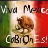 VIVA MEXICO REMIX  DJ GUERO MIX
