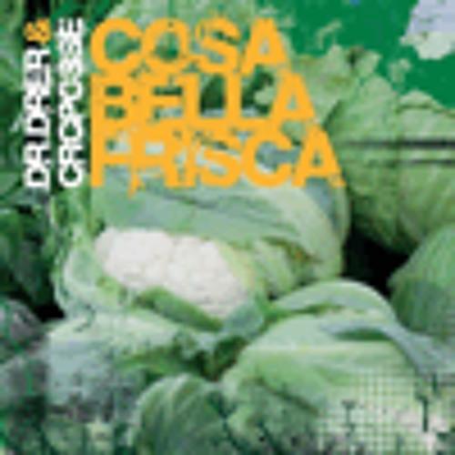 DR.DRER & CRC POSSE - Cosa bella frisca [2012]