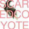 P_L_a_N_E_T_S-Scared_Coyote