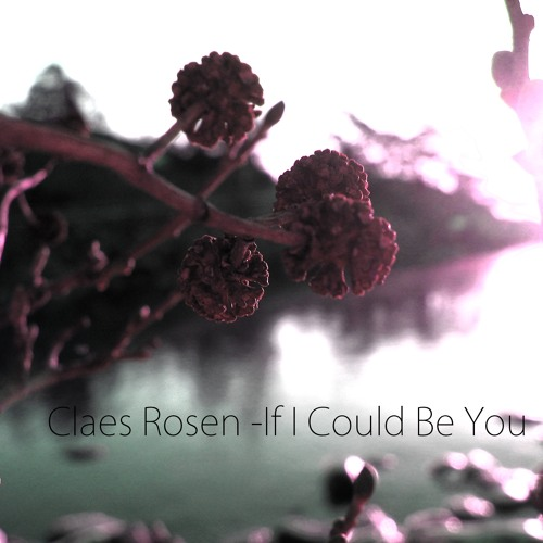 Claes Rosen - If I Could Be You