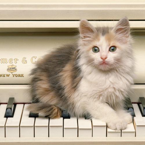Calm piano pieces