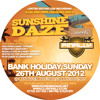 DJ EZ and Pied Piper Live at Sunshine Daze