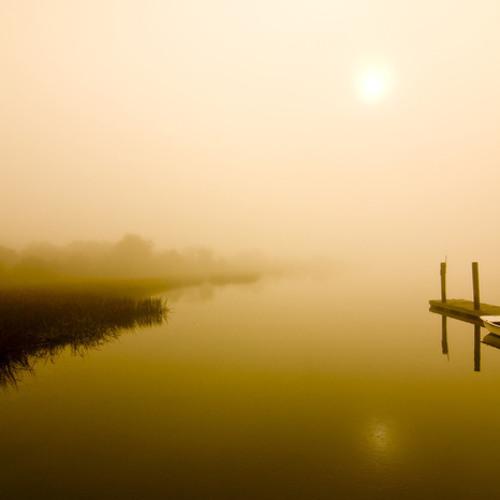 Fog Stories