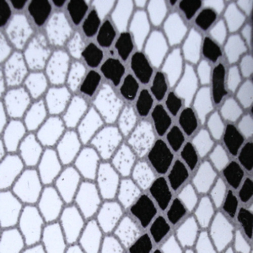 The Honeycomb Project - Arjan Bakker